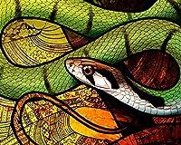 番号でペイントキャンバスカラー原稿ヘビパターン爬虫類Diy番号でペイント現代アート子供のための子供のギフト家の装飾 カスタマイズ可能 50x65cmフレームなし