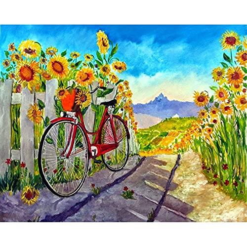 Kits de pintura de diamante para adultos Bicicleta de flores 40x50cm taladro completo,artesanía de diamantes para decoración del hogar,kits de diamantes