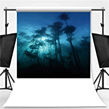 Macrocystis pyrifera Grows Off The Coast of South Africa Theme Backdrop Backdrop Background for Photography,is Habitat for Many Species of Fish Marine invertebra,8.2x8.2ft