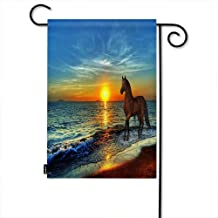 Best winter sunset horse Reviews
