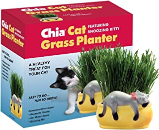 Chia Pet Kitty Cat Grass, Decorative Pottery Planter, Easy to Do and Fun to Grow, Novelty Gift, Perfect for Any Occasion