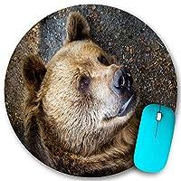 KAPANOU ラウンドマウスパッド カスタムマウスパッド、クマの肖像画のクローズアップ、PC ノートパソコン オフィス用 円形 デスクマット 、ズされたゲーミングマウスパッド 滑り止め 耐久性が 200mmx200mm