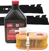 Toro Time Master (Serial Range 312000001 to 313999999) Tune-up Kit