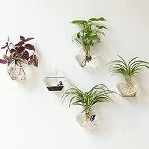 Mkono 2 Pack Wall Hanging Plant Terrarium Glass Planter for Home Decor, Hexagon Shape, M