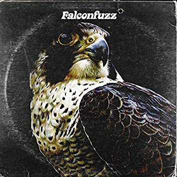 Falconfuzz