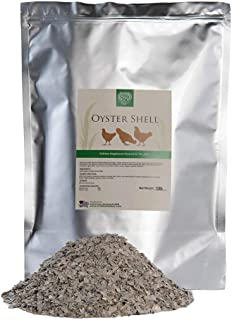 Best large oyster shell Reviews
