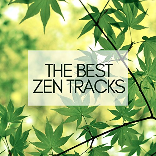 The Best Zen Tracks - Mindfulness Meditation, Concentrarion and Contemplation for Yoga, Massage Spa, Beautiful Natural Sounds