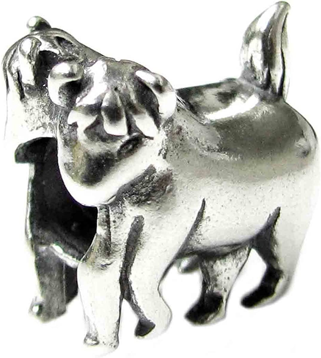 Queenberry Sterling Silver Zodiac European Style Bead Charm