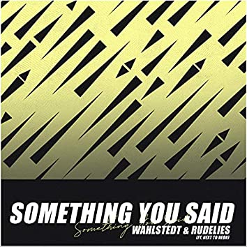 Something You Said (feat. Next to Neon)