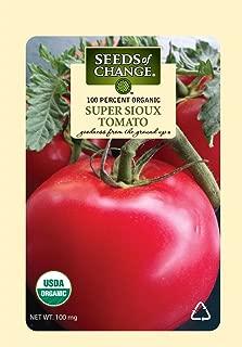 super sioux tomato plants