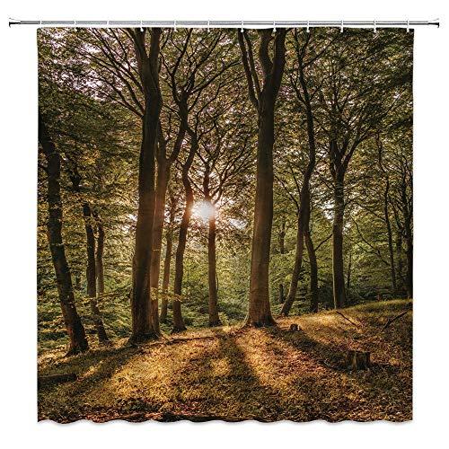 Forest Sunshine Duschvorhang, Naturlandschaft, Herbstpflanze, minimalistisch, grün-gelb, Badezimmer-Gardinen, Dekoration, Polyestergewebe, schnelltrocknend, 183 x 183 cm, inklusive Haken