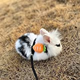 Adjustable Bunny Rabbit Harness and Leash Set, Small Pet Cute Vest Harness Leash for Safety Walking Running, Soft Harness Leash Fit Rabbit Bunny Guinea Pig Puppy Kitten Ferrets's Outdoor Cat Harness-S