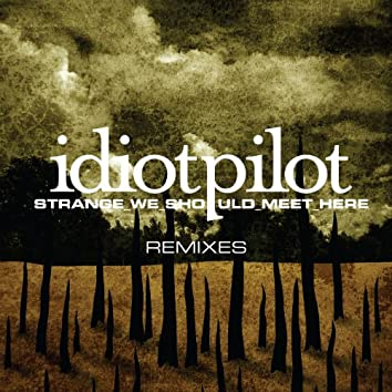 "Remixes From ""Strange We Should Meet Here"" (DMD Maxi)"