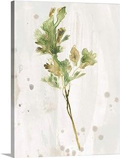 Antique Earthtone Herbs I Canvas Wall Art Print, 36