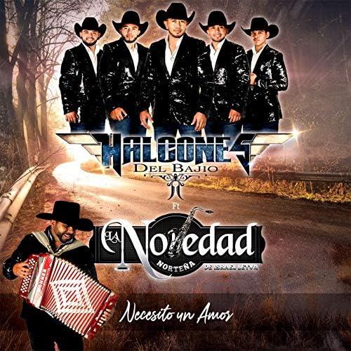 Halcones Del Bajio feat. La Novedad Norteña de Israel Leyva