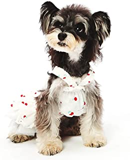 YSNRH Pet Clothing Pet Supplies Pet Dress Dog Clothes Teddy Spring Schnauzer Dress Dog Princess Skirt Thin Section Pet Cloak,White (XS-XXL) Pet Costume,Living Room,Outdoor (Size : XS)