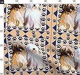Tibetanisch, Terrier, Marineblau, Geometrisch, Gemustert,
