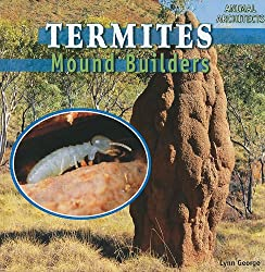 Termites: Mound Builders Book for children