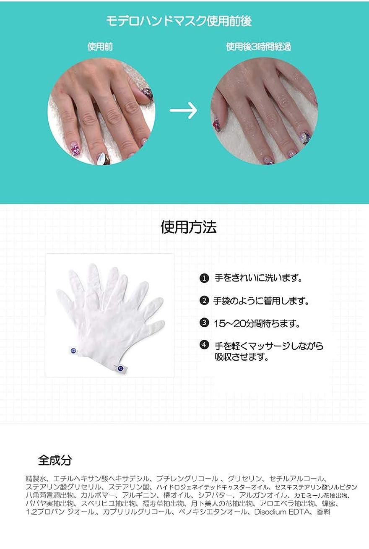 福祉信号序文モデロ ハンドパック 手袋 韓国製 10個
