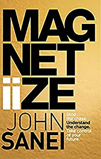 Magnetiize: How to stop chasing life & start attracting success in the modern, disrupted world