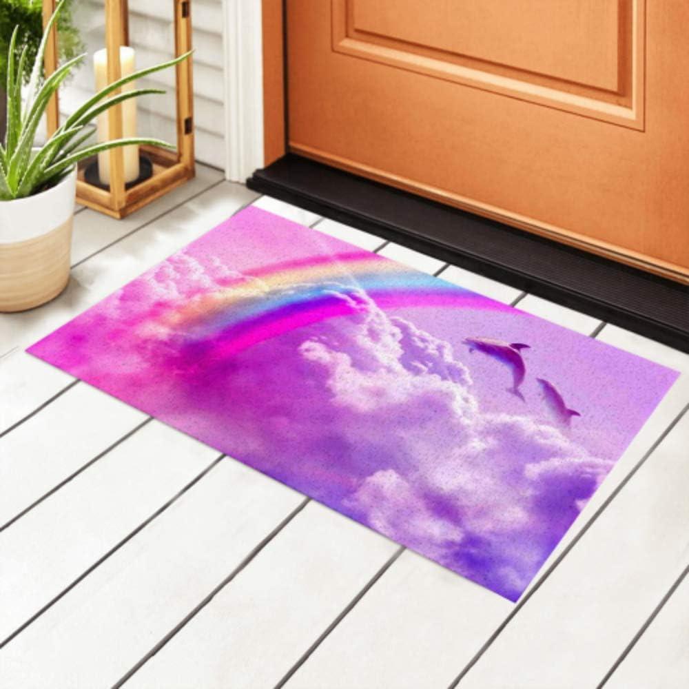 Sales JIUCHUAN Popular popular Indoor Doormat Magic Rainbow Cloud Background Fantasy F