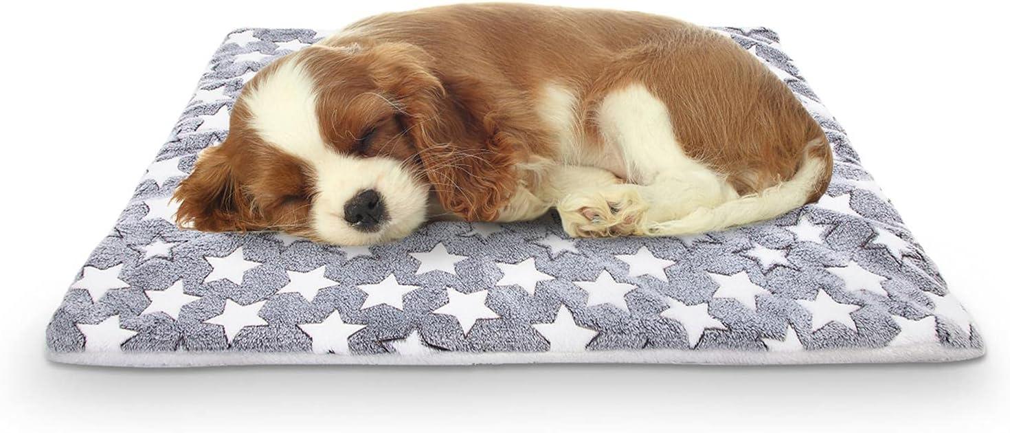 Nobleza colchón para Perros de Franela, colchoneta de Cama para Mascotas Reversible (cálido y frío), colchoneta para Dormir para Mascotas Adecuada para Perros Grandes y pequeños, Gris,L70*W55CM