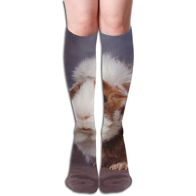 Long Socks, Hamster Knee High Socks, Unisex Tube Compression Thigh Sock Crew Athletic Football Stockings