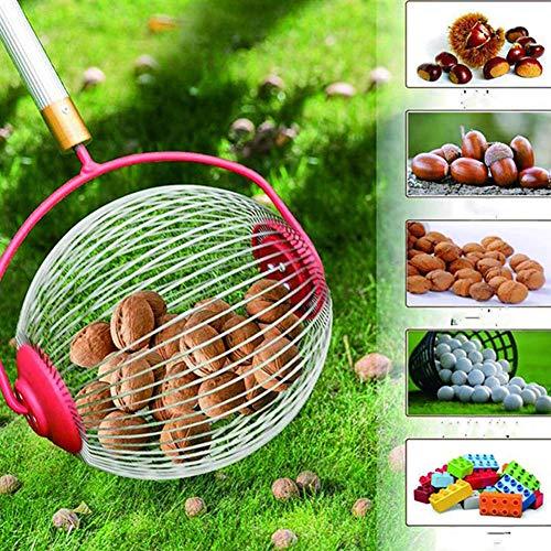 CIVIKY Recolector de Tuercas de Rodillo recolector de castañas de nueces con recogedor de Frutas de jardín de Bolas de aleación de Aluminio retráctil de 70-128 cm-Rojo