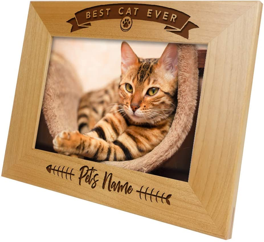 Long Haired Cat Landscape Picture Frame 5 x 7 With Hand Cast Pewter Motif Mother Father Cat Kitten Gift
