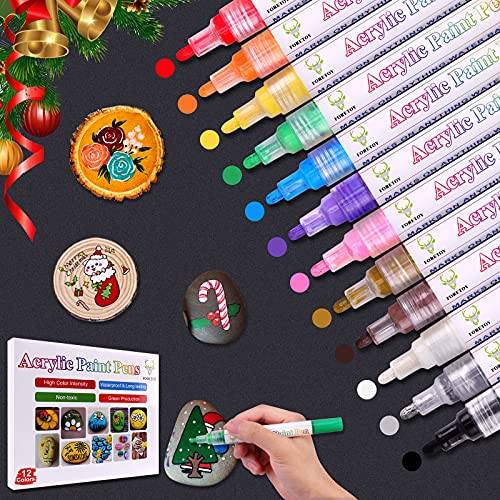Pennarelli Acrilici 12 Colori Premio Impermeabile Pennarelli Acrilici Pittura Arte Pennarello per Pittura Rupestre, Ceramica, Vetro, Metallo, Legno, Tela, Carta, Tessuto, Plastica, 2-3 mm
