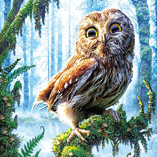 Whitelotous 5D Diamond Painting DIY Paint-By-Diamond Kit Craft Home Wall Decor - Owl in Tree 35 x 35 cm