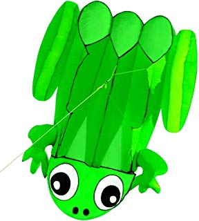 HENGDA KITE for Kids Frog Single Line Soft Cloth Kite Flying for Children Kids Outdoor Toys Beach Park Playing with 30M Lines and Handle