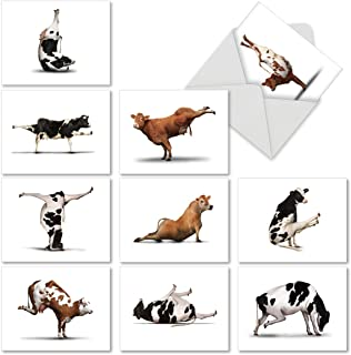 Assortment of 10 Thank You Cards Featuring Cows Doing Yoga - Boxed Set of Greeting Cards 4 x 5.12 inch with White Envelopes - 'Bovine Nirvana' M6545TYG