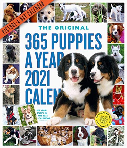 365 Puppies A Year Picture A Day Wall Calendar 2021 product image