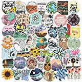 100PCS Fresh Vine Stickers Pack Lively Funny VSCO Stickers Waterproof Decals for Water Bottles Laptop for Adults Teens