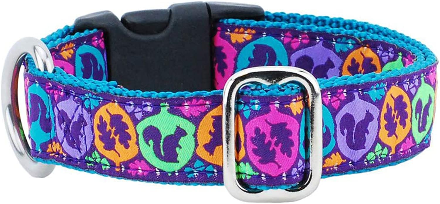 2 Hounds Design Essential Dog Collar. Fun Patterns. Adjustable & Made in USA (Squirrel, Large)