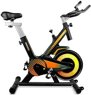 gridinlux. Trainer Alpine 6000. Bicicleta Spinning Pro Indoor. Volante de Inercia 10 kg, Nivel Avanzado, Sistema de Absorc...
