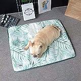 Dr.Sprayer Cuna de Perro Pet Mat FOURING Dog Pad Pad HIEL SILICIDO Pet Pet Pet Cable Dog COFRADA COVIDO Mujer Mujer Mouse Kennel Green 65 * 47cm Salir