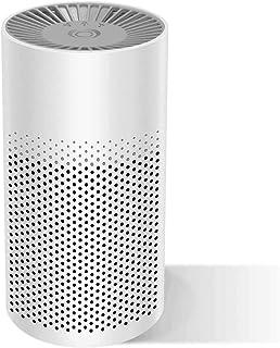 Purificador de aire portátil para el hogar con filtro HEPA verdadero, filtro de aire con modo reposo filtro aire USB para alergias fumadores polvo bacterias polen olor ambientador (Blanco negro)