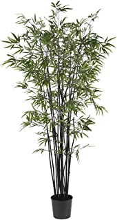 Nearly Natural 5277 Black Bamboo Silk Tree, 6.5-Feet, Green