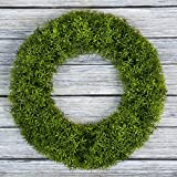 Pure Garden Boxwood Wreath, Artificial Wreath for The Front Door, Home Décor, UV Resistant - 20 Inches