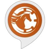 BettingGods.com - Horse Racing & Football Tips