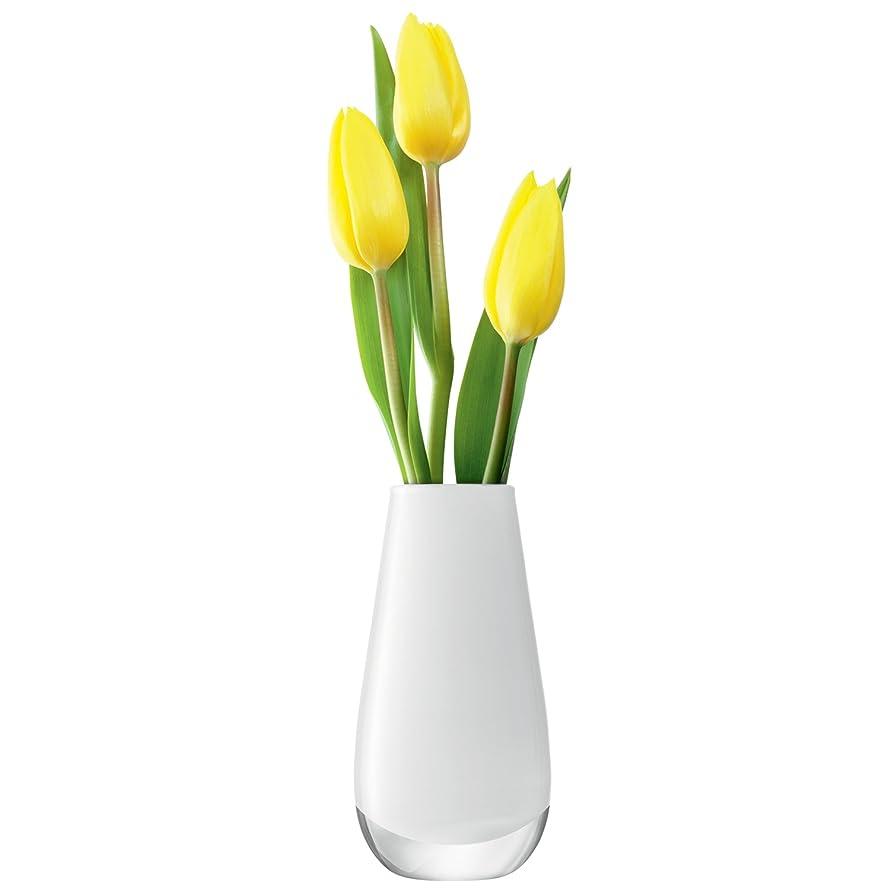 復讐コンピューターを使用する嬉しいですLSA(エルエスエー) フラワーベース(花器) ホワイト 高さ17cm FLOWER COLOUR G732-14-391