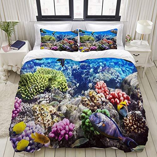 Yaoniii Bettwäsche 3 Teilig Bettgarnitur,Lot Hurghada Riff Korallenfisch Rot Ägypten Tiere Tierwelt Natur Ozean Leben Aquarium Hawa,Gemütlich 3D Mikrofaser Bettbezug Set + 2 Kissenbezug 200 x 200 cm