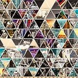 Hoffman Fabrics Hoffman Digital Globe Hopper City Triangle Geo, Prism Yard