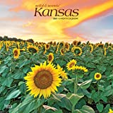 Kansas Wild & Scenic 2021 12 x 12 Inch Monthly Square Wall Calendar, USA United States of America Midwest State Nature