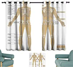 Human Anatomy Simple Curtain Diagram of Human Skeleton System with Titled Main Parts of Body Joints Picture Darkening and Thermal Insulating 55