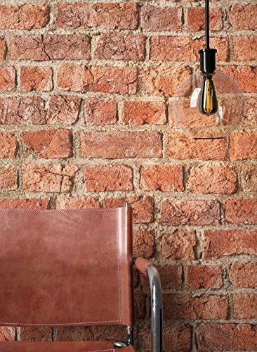 Newroom Design NEWROOM Rot Mauer Modern Bild