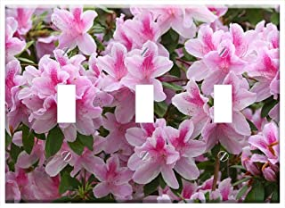 Switch Plate Triple Toggle - Azalea Rhododendron Flower Bloom Blossom Pink