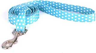 Yellow Dog Design New Blue Polka Dot Dog Leash-Size Large-1 Inch Wide and 5 feet (60 inches) Long